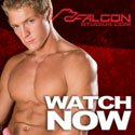 Click here to visit Falcon Studios